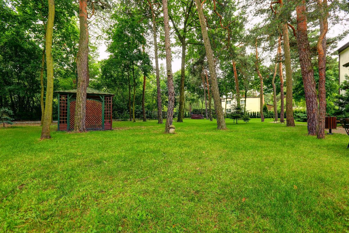 Teren zielony przed głównym wejściem